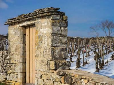 Que sont les Climats de Bourgogne ?