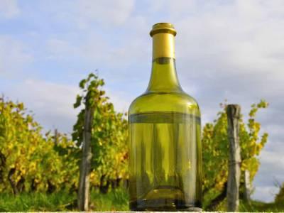 Le vin jaune : un vin emblématique