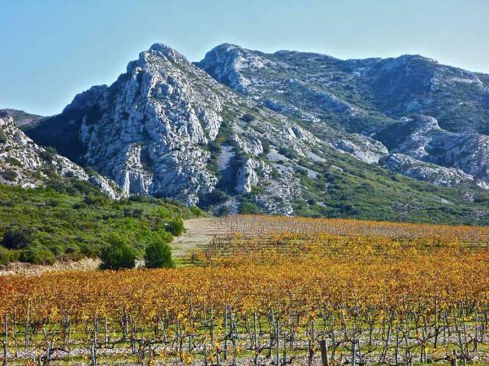 Mas de la Dame, les Baux de Provence dans les Alpilles