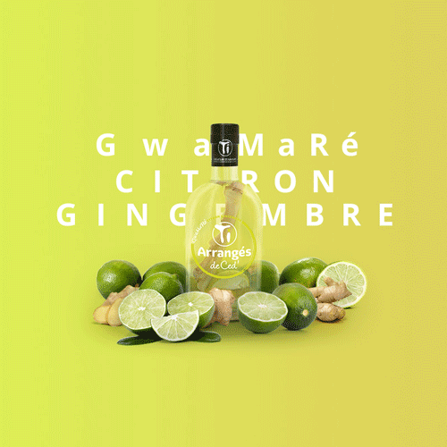 Citron Gingembre